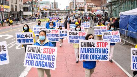 ONGS lançam declaração sobre combate e prevenção da extração forçada de órgãos da China