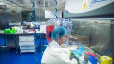 Documentos recém-liberados detalham a pesquisa de coronavírus financiada pelos EUA no Instituto de Virologia de Wuhan