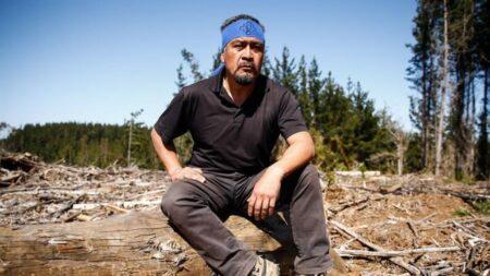 Incêndio criminoso é registrado após militarização de área mapuche no Chile