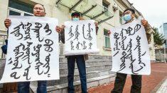 Mongólia Interior: autoridades reprimem protestos enquanto residentes rejeitam o ensino de mandarim