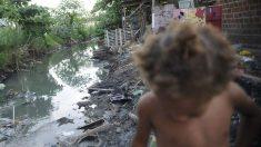 Fome: metade das crianças de até 4 anos vive em insegurança alimentar